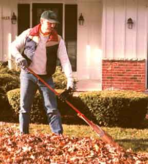 Raking Leaves is a Breeze